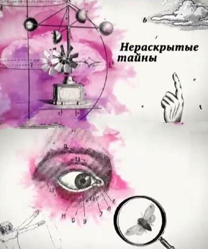 """""""Нераскрытые тайны"""": Поварская улица (2015) SATRip"""