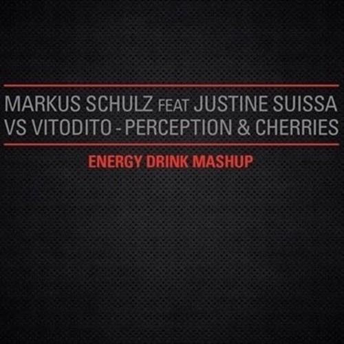 Markus Schulz Feat Justine Suissa Vs Vitodito - Perception & Cherries (2013)