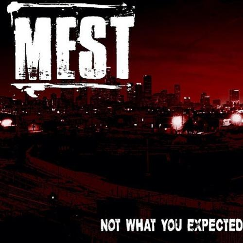 Mest - Not What You Expected (2013)