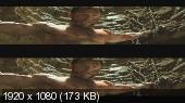 Росомаха: Бессмертный 3Д / The Wolverine 3D Вертикальная анаморфная