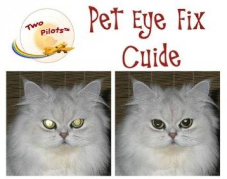 Pet Eye Fix Guide 2.0