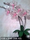 Мои цветочки из бисера 0b5f749f9c39286e38fe4a4dd58d651f