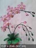 Мои цветочки из бисера Cf72beba6f3a312195446a1e46059337
