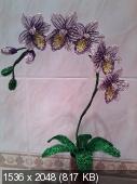 Мои цветочки из бисера E602db80d316885aeabdf67a9f32278a