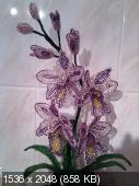 Мои цветочки из бисера 049ac1384fca4aa5bed9d11bca54b4a6