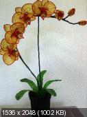 Мои цветочки из бисера 0a7b9451d9370ccf88b7e1c38c891ea7