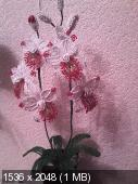 Мои цветочки из бисера C602a13148f01bf712f0e4b20a81eead