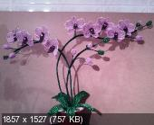 Мои цветочки из бисера 18a52fd2c3ef5316d06f9702d25dcfe4