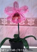 Мои цветочки из бисера 3d5e73ee952347f1424e853f3725a157