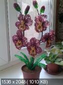 Мои цветочки из бисера E722e5fc0ba56390243199f887057bb7
