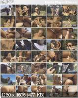 Bisexual Dreams 2 (2004/DVDRip)