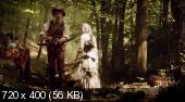 Сказки Братьев Гримм: Золушка / Aschenputtel (2011) DVDRip