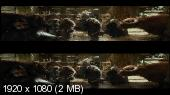 Хоббит: Пустошь Смауга 3Д / The Hobbit: The Desolation of Smaug 3D Вертикальная анаморфная