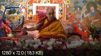 Далай-лама в Риге 2014. Учения для стран Балтии и России (2014) HDTVRip 720p