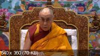 Учения Далай-ламы для буддистов России (2009-2014) WEB-DLRip, HDTVRip 720p, DVDRip