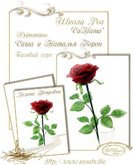 Школа Роз. Выпуск Базового курса 17ba1327722b96649d0b43143a326490