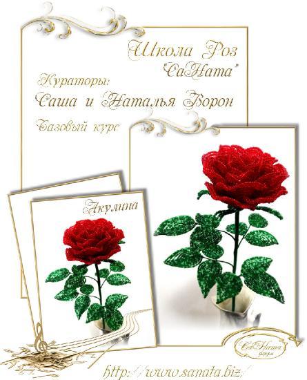 Школа Роз. Выпуск Базового курса Ab415fffac26d606d998564e6b74c3d6