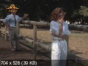 Кровавые узы: история жены мафиози (1987) SATRip