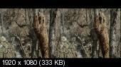 Земля медведей в 3Д / Land of the Bears 3D Горизонтальная анаморфная