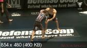 Смешанные единоборства. MMA. EBI 3 [Eddie Bravo Invitational 3] (Full Event) [22.03] (2015) WEBRip