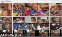 Swimwear Sluts (2008/DVDRip)