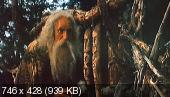���� ����������� (1 � 2 �����) (1985)